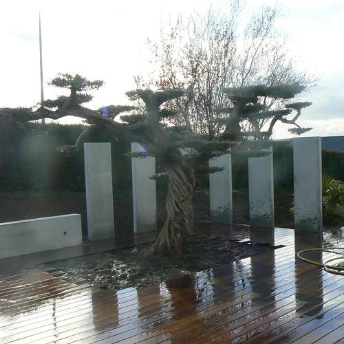 Terrasse et dallage à Trégueux