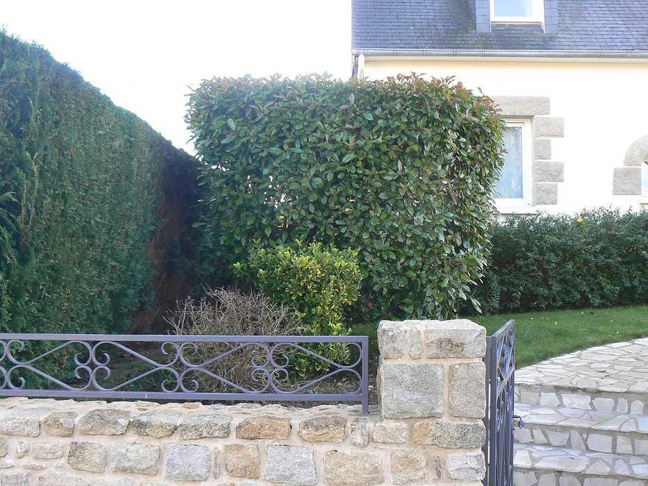 Modernisation d''un jardin - Plédran p1260961
