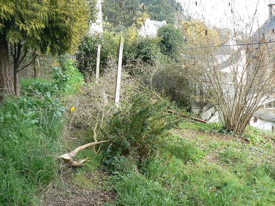 Aménagement d'un terrain en pente, accueil de la maison et aménagement de différentes zones du jardin - Binic p1240015